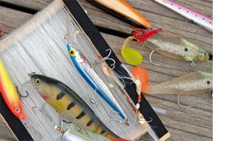 Pêche dans le Pertuis